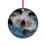 Blue-Eyed Himalayan Kitten Ornament