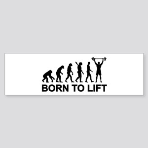 Evolution born to lift weightlift Sticker (Bumper)