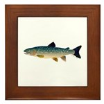 Dolly Varden Bull Trout Char Framed Tile