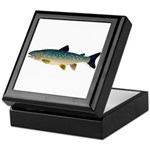 Dolly Varden Bull Trout Char Keepsake Box