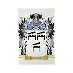Hampsheir Rectangle Magnet (100 pack)
