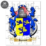 Hamnett Puzzle