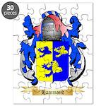 Hammond Puzzle