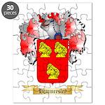 Hammersley Puzzle