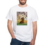 Spring / Dachshund White T-Shirt
