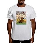 Spring / Dachshund Light T-Shirt