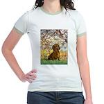 Spring / Dachshund Jr. Ringer T-Shirt
