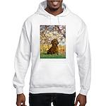 Spring / Dachshund Hooded Sweatshirt