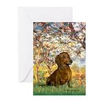 Spring / Dachshund Greeting Cards (Pk of 10)