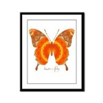 Summer Orange Butterfly Framed Panel Print