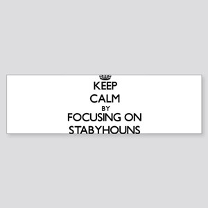 Keep calm by focusing on Stabyhouns Bumper Sticker