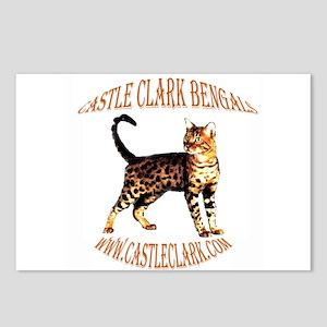 Castle Clark Bengal Cat: Raja Postcards (8)