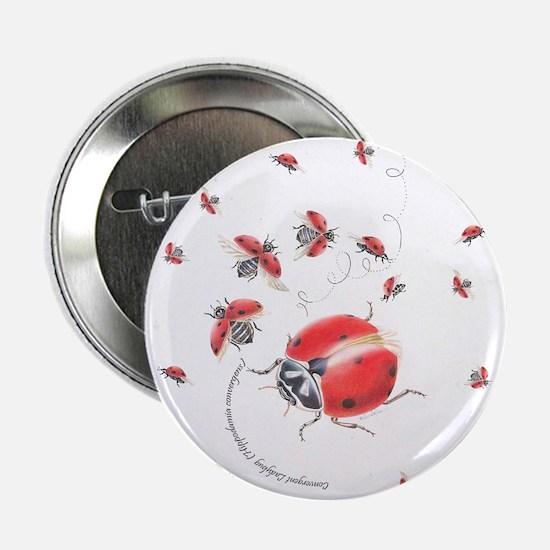 "Ladybug, ladybug fly away 2.25"" Button (10 pack)"