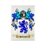 Hallinan Rectangle Magnet (100 pack)