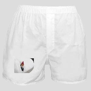Snowbound Hector Boxer Shorts