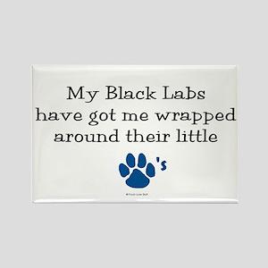 Wrapped Around Their Paws (Black Lab) Rectangle Ma
