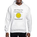 Christmas Sunshine Hooded Sweatshirt