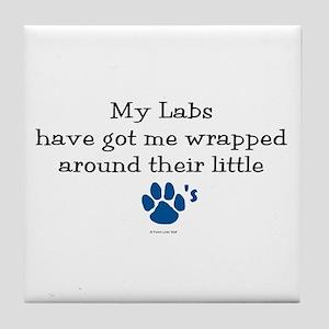 Wrapped Around Their Paws (Lab) Tile Coaster