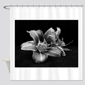 daylily 3 BW Shower Curtain