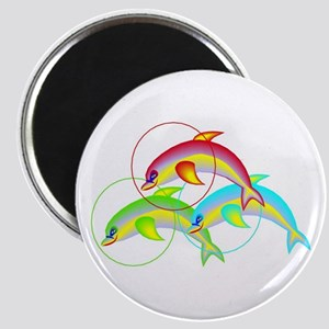 Colorful Flying Dolphins Magnet
