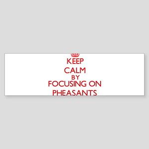 Keep Calm by focusing on Pheasants Bumper Sticker