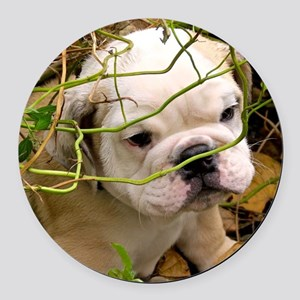 English Bulldog Puppy Round Car Magnet