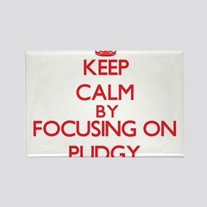 Keep Calm by focusing on Pudgy Magnets