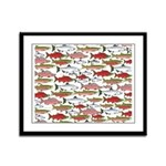 Pacific Salmon pattern Framed Panel Print