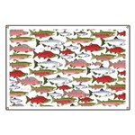 Pacific Salmon pattern Banner