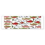 Pacific Salmon pattern Bumper Sticker