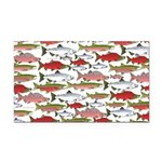 Pacific Salmon pattern Rectangle Car Magnet
