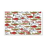 Pacific Salmon pattern Car Magnet 20 x 12