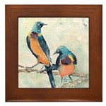 Golden Breasted Starlings Framed Tile