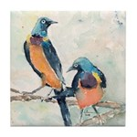 Golden Breasted Starlings Tile Coaster
