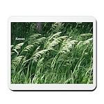 Kansas Tall Grass Mousepad