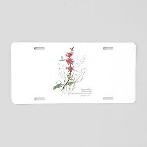 Hummingbird sage Aluminum License Plate