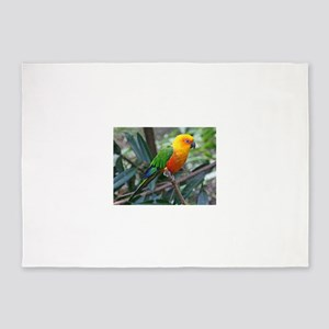 Parakeet 5'x7'Area Rug