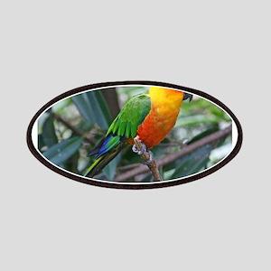 Parakeet Patches