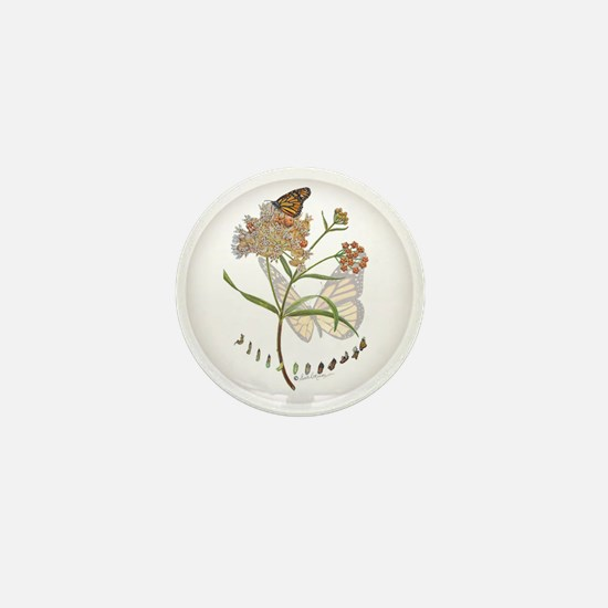 Monarch Butterfly With Narrowleaf Mini Button