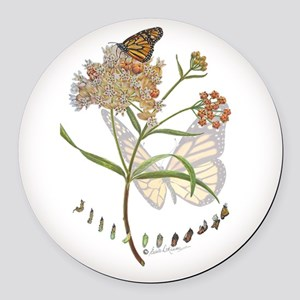 Monarch butterfly with Narrowleaf milkweed Round C