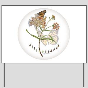 Monarch butterfly with Narrowleaf milkweed Yard Si