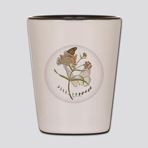 Monarch butterfly with Narrowleaf milkweed Shot Gl