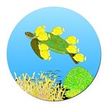 Green Sea Turtle and Tangs Round Car Magnet