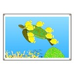Green Sea Turtle and Tangs Banner