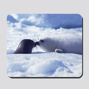 Harp Seal Mousepad