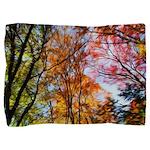 Autumns Trees Painting Pillow Sham