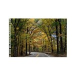 Morning Sun Road 113 Rectangle Magnet (10 pack)