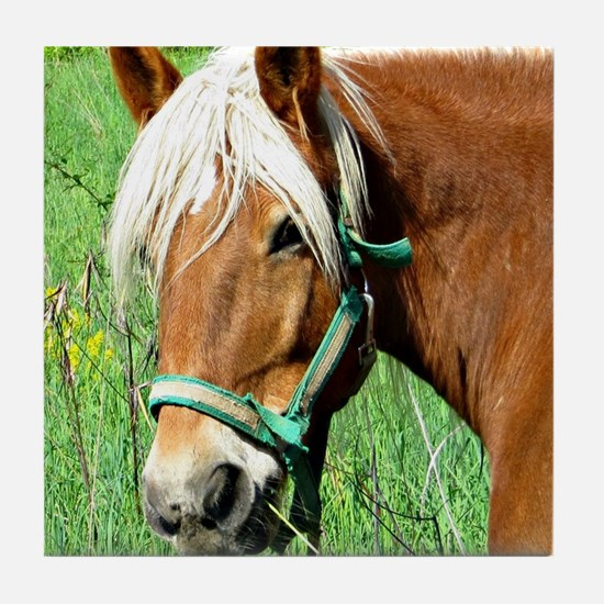 Goldie Suffolk Draft Horse Tile Coaster