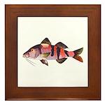 Manybar Goatfish Framed Tile