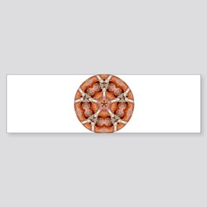 Striped Star of Seashells Mandala Bumper Sticker
